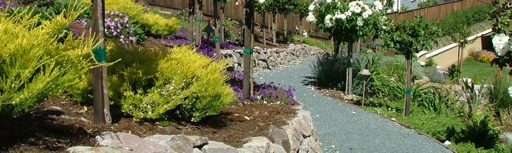 https://www.jennifercravenlandscape.com/wp-content/uploads/2014/05/landscape-design-sloped-yard.jpg