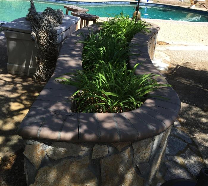 raised planter san francisco landscape design